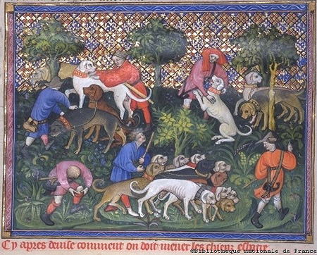 an analysis of the extensive use of alliteration in the story sir gawain and the green knight Study guide: sir gawain and the green knight i background notes: a poem intertwines three traditional medieval plots: the beheading contest.